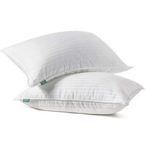 Fern and Willow Premium Loft Down Alternative Pillows for Sleeping (2-Pack) - Luxury Gel Plush Pillow (Queen)