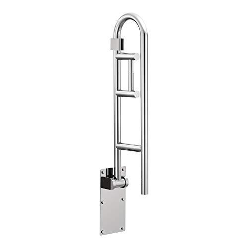 Moen R8962FD Home Care 30-Inch Flip-Up Bathroom Grab Bar with Toilet Paper Holder, Stainless