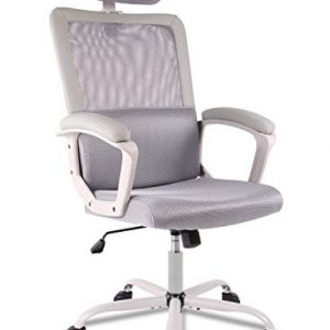 Ergonomic Office Chair Adjustable Headrest Mesh Office Chair