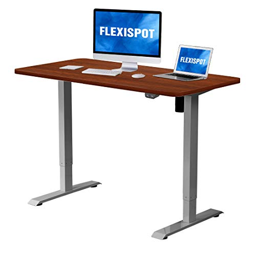 Flexispot Electric Height Adjustable Desk Sit Stand Desk, 48 x 30 Inches Whole-Piece Desk Board Home Office Table Stand up Desk(Gray Frame + 48 in Mahogany Top)