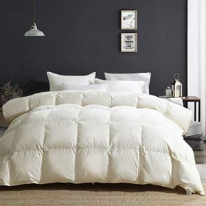 APSMILE Luxury Heavyweight Goose Down Comforter for Winter Colder Climates/Sleeper- 100% Organic Cotton, 650FP Fluffy Thicker Duvet Inserts (Beige White, King)