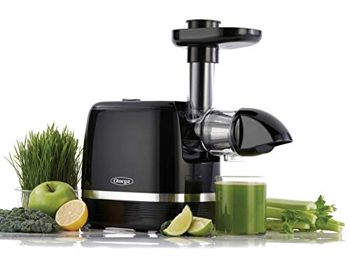 Omega H3000D Cold Press 365 Juicer Slow Masticating Extractor Creates Delicious Fruit Vegetable and Leafy Green High Juice Yield and Preserves Nutritional Value, 150-Watt, Black