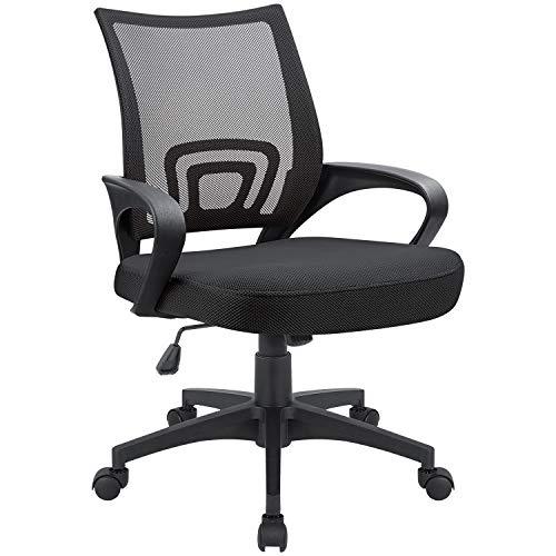 Devoko Office Chair Ergonomic Mid Back Swivel Mesh Chair Height Adjustable Lumbar Support Computer Desk Chair with Armrest (Black)