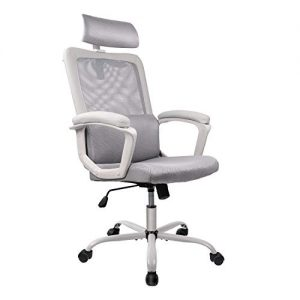Smugdesk Ergonomic Office Chair, High Back Mesh Desk Office Chair Adjustable Headrest Computer Task Chair - Gray