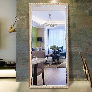 "Hans & Alice 65""x24"" Rectangular Bathroom Full Length Floor Mirror Standing or Hanging(Champagne)"