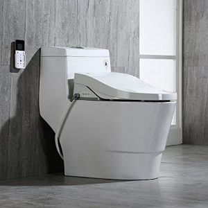 WoodBridge T-0008 One Piece Toilet, Elongated with Advanced Bidet - Smart Toilet Seat with Temperature Control and Air Dryer
