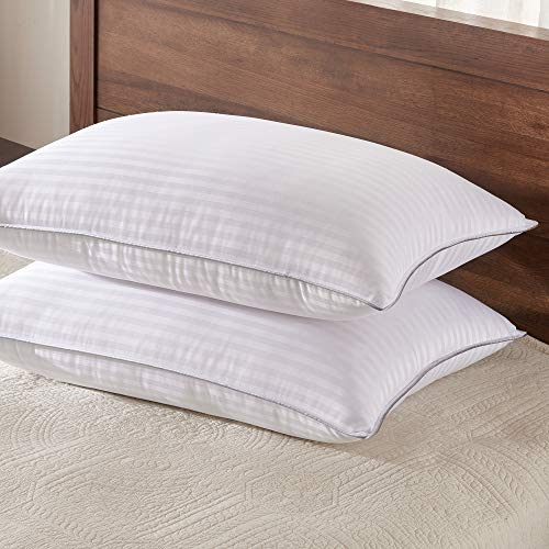 Basic Beyond Down Alternative Queen Size Bed Pillows - 2 Pack Hotel Collection Super Soft Pillow for Sleeping with Bamboo Materials Fill, 20x30