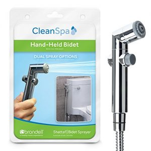 Brondell CS-30 CleanSpa Hand Held Bidet, Chrome