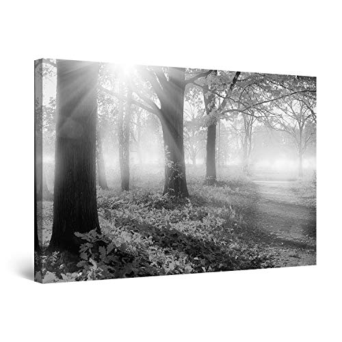 Startonight Canvas Wall Art Black and White Abstract Sunrise Morning Light Trees Nature Landscape, Painting 32 x 48 Inches