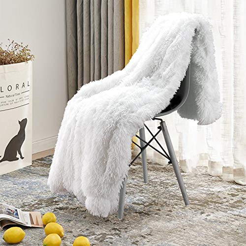 Beglad Super Soft Shaggy Throw Blankets, Cozy Long Plush Fuzzy Faux Fur Bed Throw, Fluffy Luxury Sherpa Fleece Blanket for Bedroom Living Room, 60x80 inch, White