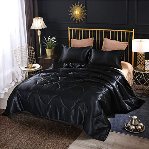 NTBED Luxury Silky Satin Comforter Set Soft Lightweight Microfiber Sexy Quilted Bedding Sets with 2 Matching Pillow Covers (Black, Queen)