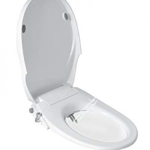 Toilet Seat Bidet with Dual Nozzles-Rear & Feminine Washing,Non Electric Bidet…