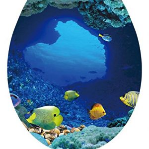 DNVEN 13 inches x 15 inches Tropical Fish Undersea Ocean Under Water Bathroom Toilet Seat Lid Cover Decals Stickers